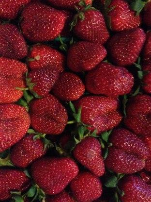 WhiteChocStrawberry2